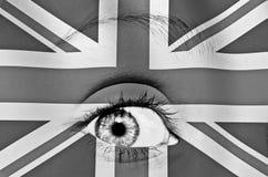 Visione britannica Fotografia Stock Libera da Diritti