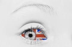 Visione britannica Immagini Stock