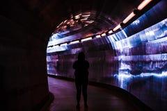 Visione di tunnel Fotografie Stock Libere da Diritti