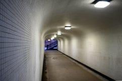 Visione di tunnel con la scala Immagini Stock Libere da Diritti