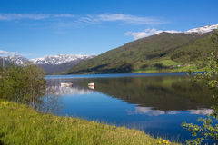 Visit the beautiful country Norway Stock Photos