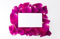 Visit card on floral framework Stock Photo