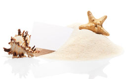 Visit card with starfish and sea shell on beach sand Royalty Free Stock Photo