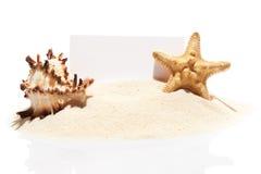 Visit card, starfish and seashell on pile of beach sand Stock Photos