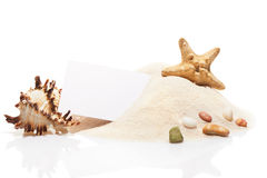 Visit card, starfish, seashell and stones on pile of sand Royalty Free Stock Photos