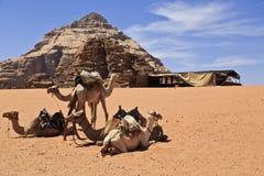 Visit Jordan. Bedouin tent in Wadi Rum desert Royalty Free Stock Photos