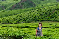 In the visit on a tea plantation Stock Photo