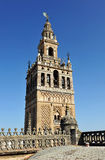 Visit to the decks of the cathedral of Seville, Giralda tower, Andalusia, Spain Stock Images