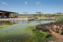 Visit to Hiriya (Ariel Sharon park) Royalty Free Stock Image