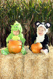 Visit to a Pumpkin Patch. Two toddlers in Halloween costumes visit a pumpkin patch. They are sitting on a hay bale royalty free stock photos