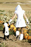 Visit to a Pumpkin Patch Stock Image