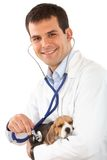 Visit to the Vet Royalty Free Stock Images