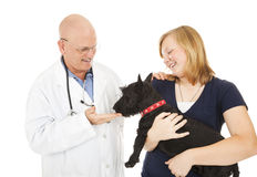 Visit to the Veterinarian Stock Images
