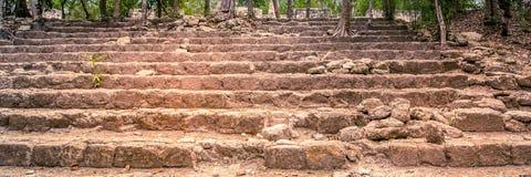 Visita da cidade antiga do maya de Calakmul - Iucatão sul - Mex imagens de stock