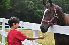 Visita de granja foto de archivo libre de regalías