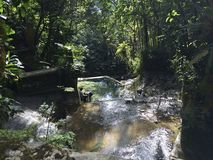 Visitando Xilitla Mexiko lizenzfreies stockbild