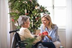 Visitante da saúde e mulher superior na cadeira de rodas com um presente em casa no Natal imagens de stock royalty free