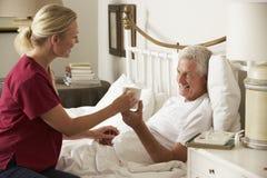 Visitante de la salud que da la bebida caliente masculina mayor en cama en casa Fotos de archivo
