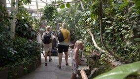 Visitantes al parque zoológico en los reptiles del pabellón almacen de metraje de vídeo