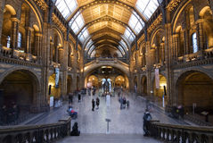 Visitantes del museo Fotos de archivo libres de regalías