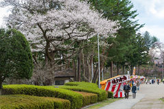 Visitantes no parque de Iwate (parque do local do castelo de Morioka) Fotografia de Stock Royalty Free