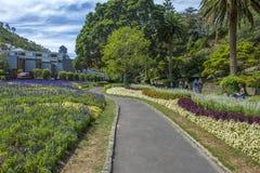 Visitantes que descansan en Wellington Botanic Garden, Nueva Zelanda Foto de archivo libre de regalías
