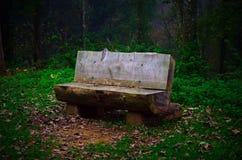 Visite au parc Photo libre de droits