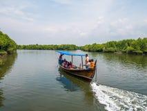 Visite de bateau de palétuvier par les canaux de la forêt de palétuvier en Indonésie image libre de droits