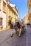 Visite de chariot de cheval de Cracovie (Cracovie) - Pologne Image stock