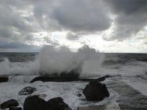 Visite de mer Photographie stock libre de droits
