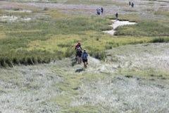 Visite des monuments de nature vers l'île Griend du Wadden Images libres de droits
