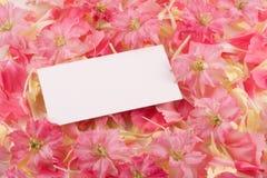Visitenkarte auf Blumen Stockbild