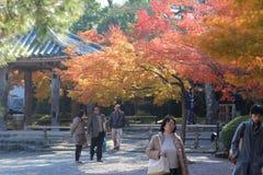 visiters на Киото, Японии Byodo-в виске стоковые фотографии rf