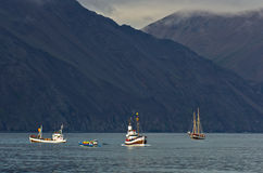 Visites de observation de baleine au secteur de baie de Husavik Photographie stock