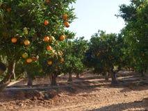 Visites en Espagne et au Portugal 2013 Photographie stock