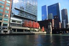 Visiti il Chicago River nella caduta per vedere l'architettura ed il paesaggio da entrambi i lati del fiume immagini stock