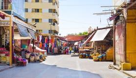 Visiting Aswan Royalty Free Stock Image