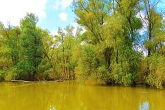 Visiting Danube Delta Royalty Free Stock Photo