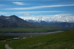Visiting Denali Royalty Free Stock Images