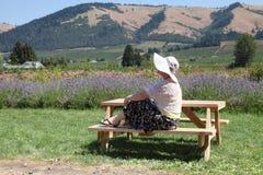 Visiting a Hood River garden, Oregon. A woman enjoying a view of the garden in Hood River Oregon stock images