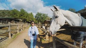 Visiting horse farm set stock video footage