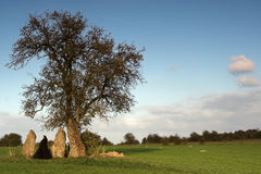 Visiting the menhirs Stock Images