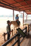 Visiting rural farmland. PAK CHONG, KORAT, THAILAND - JANUARY 15 : The unidentified cowboy is persuading tourists to ride a horse on January 15, 2012 at Chok stock photo