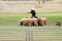 Visiting rural farmland Royalty Free Stock Photos