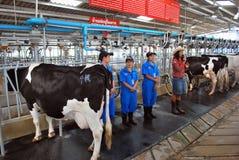 Visiting rural farmland Stock Images
