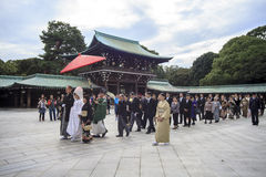 Visitor dresses up a traditional dree at Meiji-jingu shrine Stock Photography