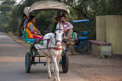 Visitor riding in a horse cart in Keoladeo Ghana National Park, Royalty Free Stock Photo