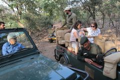 Tourist Safari jeeps in Ranthambhore forest reserve park. Visitor vehicles drive on rough terrain road inside Ranthambhore tiger safari national park, Sawai stock photography