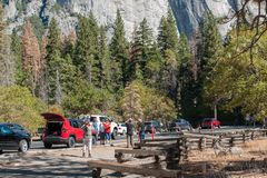 Visitor walking and sightseeing in Yosemite national Park. Tourists cars in Yosemite national Park Stock Photos