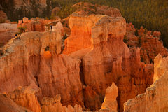 Visitors on the Bryce Canyon hoodoos Stock Image